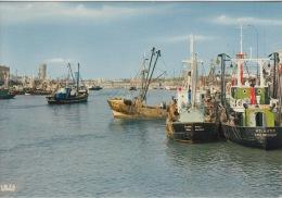 Zeebrugge     Vissershaven      Port De Pêche     Boot Schip          Scan 5348 - Zeebrugge