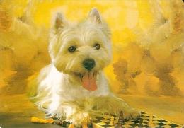 CALENDARIO DEL AÑO 2005 DE UN PERRO (CAN-DOG) (CALENDRIER-CALENDAR) - Calendarios