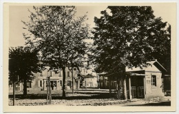 ALBAN Place Poids Public (APA Poux) Tarn (81) - Alban