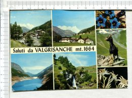SALUTI  Da  VALGRISANCHE  Mt 1664  -  5 Vues - Italia