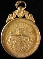 M01589 Triomphe Libéral Renaix 1886 Et écu De La Belgique Au Revers. Bélière (78 G.) - Belgium