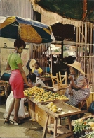 Antilles Radieuses  -  The Enchanting Caribbean  Fruit Seller - Marchande De Fruits  A-3314 - Unclassified