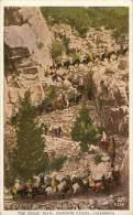 : BERO-13-127  : Californie Yosemite Valley - Yosemite