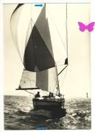 LA MER Vue Par Erwan QUEMERE Muscadet Sous Spi - Segelboote