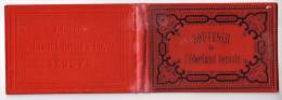 Oberland Bernois, Livre-Dépliant De 24 Lithos Format 8X12, Editeur Damon, Coulin Genève - Découpis