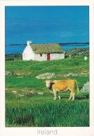 Irlanda--Donegal--Correo Aereo--Envio A Argeliers, Francia - Donegal