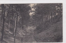 Averbode - Holleweg - Scherpenheuvel-Zichem