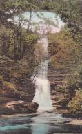 Illinois Ottawa Upper Falls Deer Park Albertype