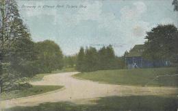 Ohio Toledo Driveway In Dttawa Park 1916