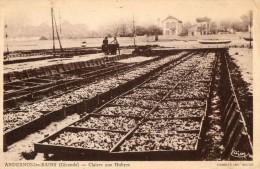 ANDERNOS -  CLAIRES AUX HUITRES DE LA MAISON SIMON - Andernos-les-Bains