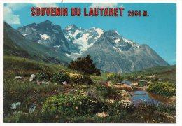 CP, 05, Jardin Alpin Du LAUTARET Et La Meije 3987 M., Vierge - Non Classés