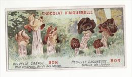Chromo  AIGUEBELLE   Les Champignons   Helvelles - Aiguebelle