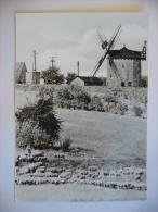 Germany: Weißensee (Kr. Sömmerda) - Alte Windmühle - Windmill, Moulin A Vent - 1980´s Unused - Weissensee
