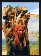 RB 956 - Ethnic Vietnam Postcard - Fetching Firewood - Man Or Woman? Smoking Pipe - Vietnam