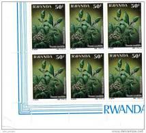 A] Bloc ** De 6 Timbres Block Of 6 Stamps Plante Médicinale Medicinal Plant Pavetta  Rwanda 1988 - 1980-89: Neufs