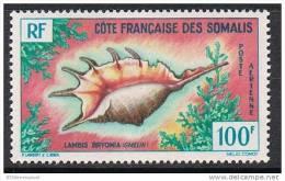 COTE DES SOMALIS AERIEN N°32 N* - Côte Française Des Somalis (1894-1967)