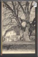 DISTRICT DE GRANDSON /// FIEZ - LA CURE - B ( PLI D'ANGLE ) - VD Vaud