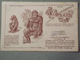 Buvard Ronsard Chimpanzé - Buvards, Protège-cahiers Illustrés