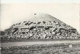 ALGERIA – POSTCARD – BATNA – LE TOMBEU /THE TOMB OF MEDRASSEN -  SHINING – NEW  RE3214/1 NR 12  - ALEXANDRE SIRECKY – OR - Batna