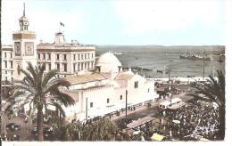ALGER  - Place Du Gouvernement  -  Mosquée Djemaa-Djedid Et Le Port - Algerien