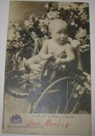Photo-Carte S.A.R. Mgr. Le Prince Léopold (bébé), Circulée En 1903 - Photo Günther, Bruxelles - Edit. V & Cie N° 54 - Königshäuser