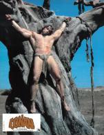 Photographie D'artiste / Movie Star Photo - Arnold Schwarzenegger (#9207) Conan Le Barbare - Schauspieler
