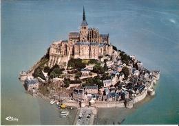 LE MONT SAINT MICHEL 50 - Vue Aérienne Sur Tombelaine - E-3 - Le Mont Saint Michel