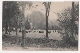 QUIMPER - Le Léonard. Prairies Au Bord Du Steïr - Quimper