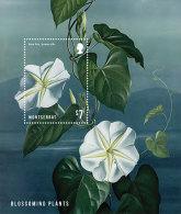 MONTSERRAT  MINT N.H SCOTT # ?? ; IGPC 1307 SS  ( FLOWERS - Montserrat