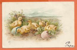FEL691, Fantaisie , Canard,  Duck, Précurseur, Circulée 1900 - Vogels