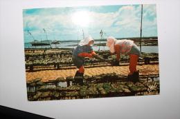 LA COTE ATLANTIQUE - Les Parqueuses D'huîtres Au Travail - Fishing
