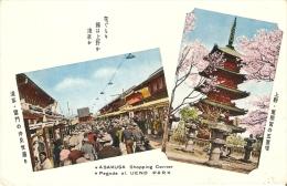 POSTAL DE JAPON DE ASAKUSA Y PAGODA UENO PARK - Tokyo
