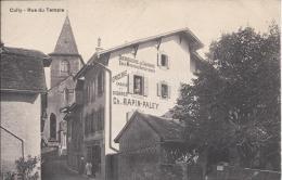 8649 - Cully Rue Du Temple Droguerie De Lavaux Epicerie Rapin-Paley - VD Vaud