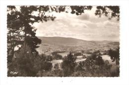 CPA -63 - Puy De Dôme : Saint Anthême : Vue Panoramique - Arbres - Champs - Village - Relief ... Peu Commune - Francia