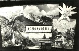 Slovenia-----Logarska Dolina-----old Postcard - Slovénie