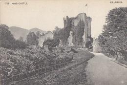 Irlande - Killarney - Ross Castle - Lord Meredith - Kerry