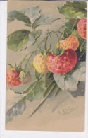 CARD KLEIN FRAGOLE   -FP-N-2- 0882-19065 - Klein, Catharina