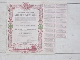 Linière Gantoise - Textiel