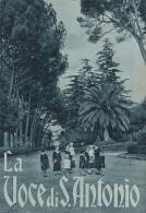 """SANT´ANTONIO  /   Rivista """"  La Voce Di S. Antonio """"  Organo Ufficiale Della Pia Unione E Della Gioventù _ 13 Mar. 1940 - Altri"""