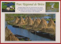 - CPM - Carte Postale - France - Bretagne - Parc Régional De Brière - - Saint-Lyphard