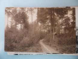 Orroir Mont De L Enclus Route Sous Bois - Kluisbergen