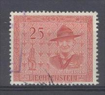 LIECHTENSTEIN - Mi 317 - Gest./obl. - Cote 25,00 € - Oblitérés