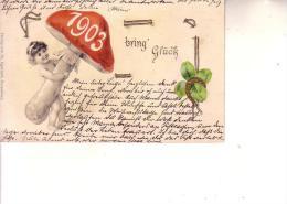 Germania  - Postkarte Relief -1903 Bring Gluck-- Il 1903 Porti Felicità-- - New Year