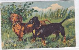 CARD CANE BASSOTTI  COPPIA MASCHIO E FEMMINA  -FP-N-2-0882-19076 - Chiens