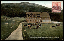 ALTE POSTKARTE RIESENGEBIRGE DIE SPINDLERBAUDE Stempel Löwenberg Schlesien Ansichtskartensammler Globus (Kosmopolit) - Sudeten