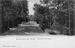 [DC7427] SAN BENEDETTO DEL TRONTO (ASCOLI PICENO) - GIARDINI PUBBLICI - Old Postcard - Altre Città