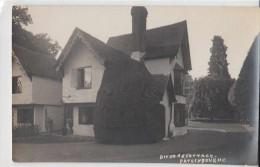 C1920 PATRIXBOURNE POSTCARD - BIFRONS' COTTAGE - Autres