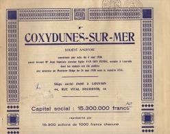 Coxyde Mer Belge COXYDUNES SUR MER Belgique - Tourisme