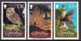 GIB1201 GIBRALTAR 2012 Birds / Oiseaux (Set) MINT (DISCOUNT AVAILABLE) - Other