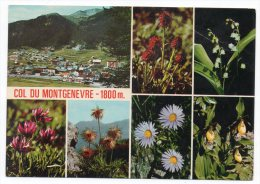 CP, 05, LE COL DE MONTGENEVRE (alt. 1800 M), Multivues, Vierge, Ed : Airel - Non Classés